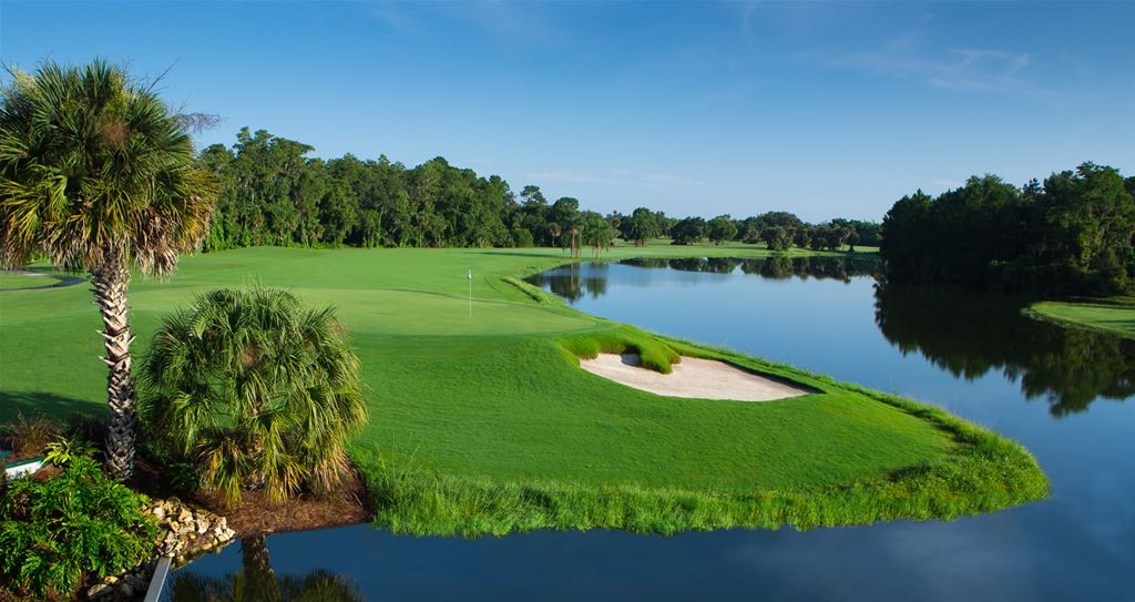 Disney Palm Course