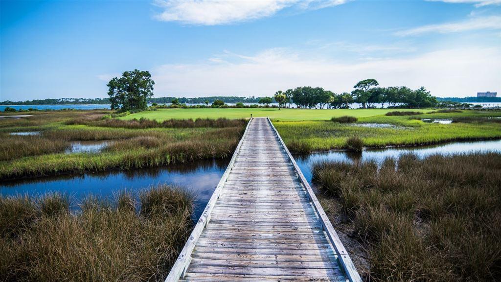 Florida Panhandle Golf Course
