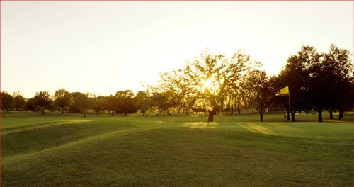 Disney Oak Trail Course