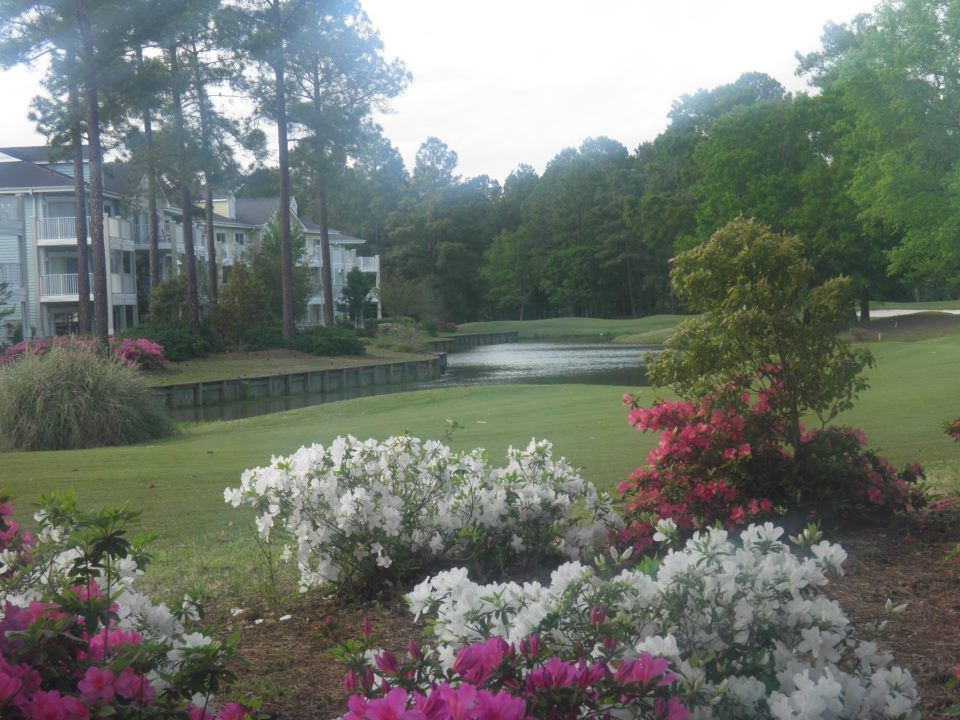 Brunswick Plantation Golf Club