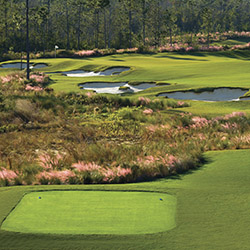The Preserve Golf Club in Biloxi, One of the finest courses in the Biloxi area